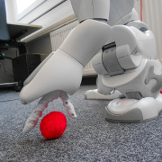D. Haller, Autonomously detecting an picking up scattered objects: design and implementation of a module for humanoid robots
